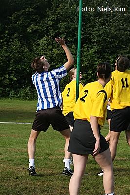 Leonidas Series 2008